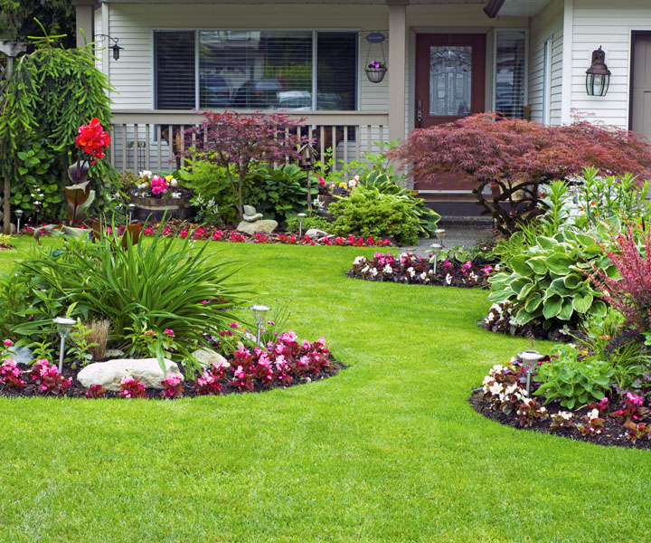 Lawn Care Services in Butler, PA